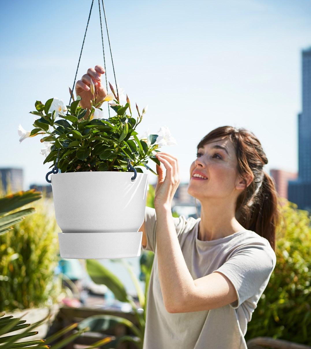 elhon greenville hanging basket -amppeli ruukku